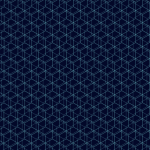 4d hexagon
